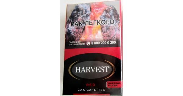 Купить сигареты марко поло в москве недорого воронеж электронная сигарета купить