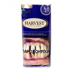 Табак Harvest Black Currant