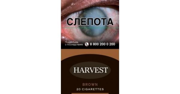 Купить blooming сигареты заказать сигареты по почте